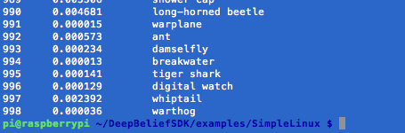 Screenshot of DeepBelief Output